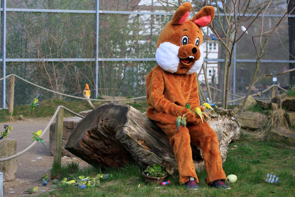 Mensch im Hasenkostüm sitzt auf Baumstamm.